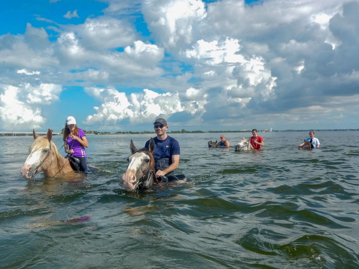Epic Travel North America The South Florida Tampa Bay Area Beach Horseback Ride Swim Location St Petersburg